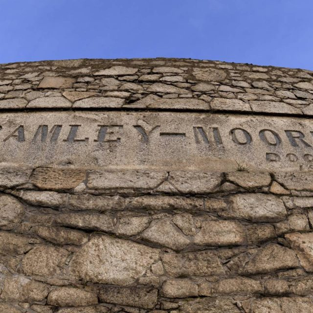 Bramley-Moore Dock wall