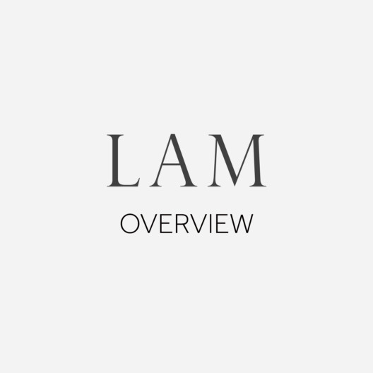 LAM-Overview_1584x1584_acf_cropped