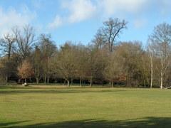 parkland 1