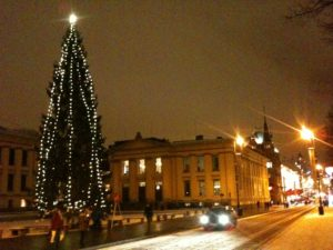Christmas tree on Karl Johans gate, Oslo