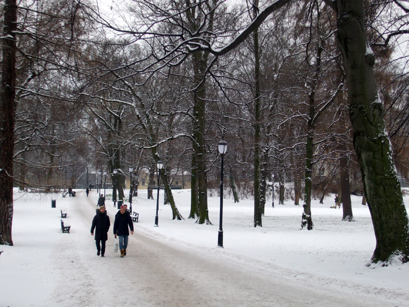 It's Beginning To Look A Lot Like Christmas in Oslo
