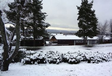 Still No Snow for Oslo. But in Trondheim…
