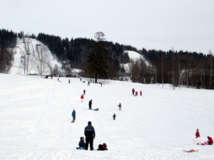 Sledging at the Olympic Park in Lillehammer