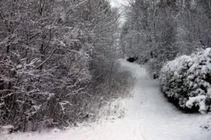 It's Snow Joke in Trondheim