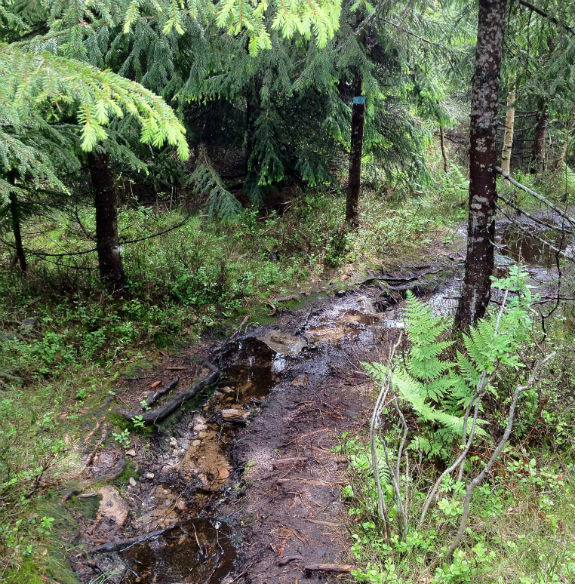 Nordmarka trail