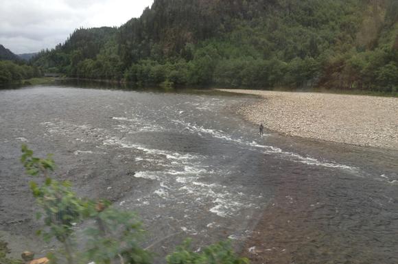 Salmon river of Trøndelag