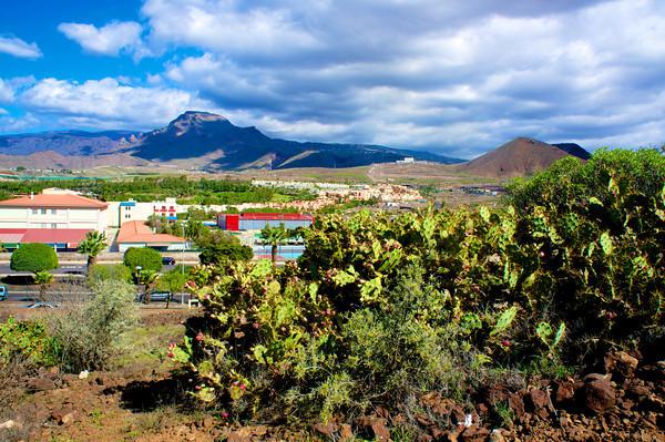 Hiking in Los Criatianos, Tenerife