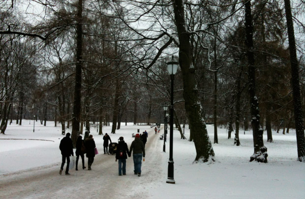 Winter in Slottsparken, Oslo