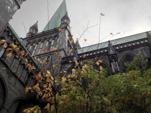 Nidarosdomen in Autumn