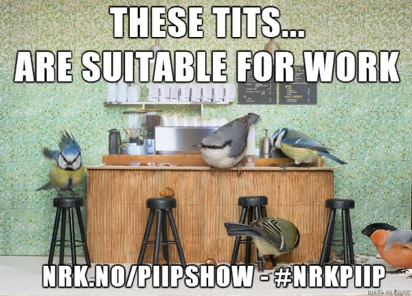 Piip Show