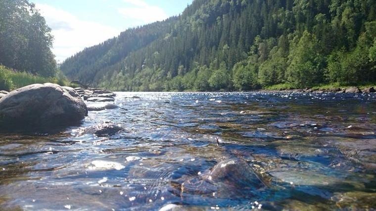 Stjørdal River