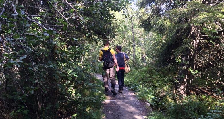 Bymarka path