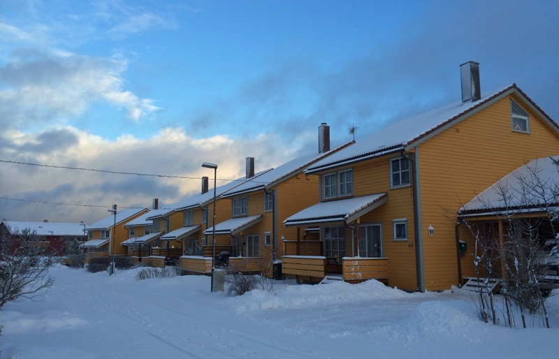 Moholt in winter