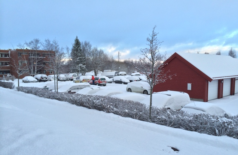 Moholt in the snow