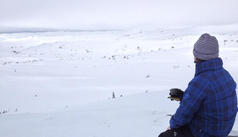 David on the mountain
