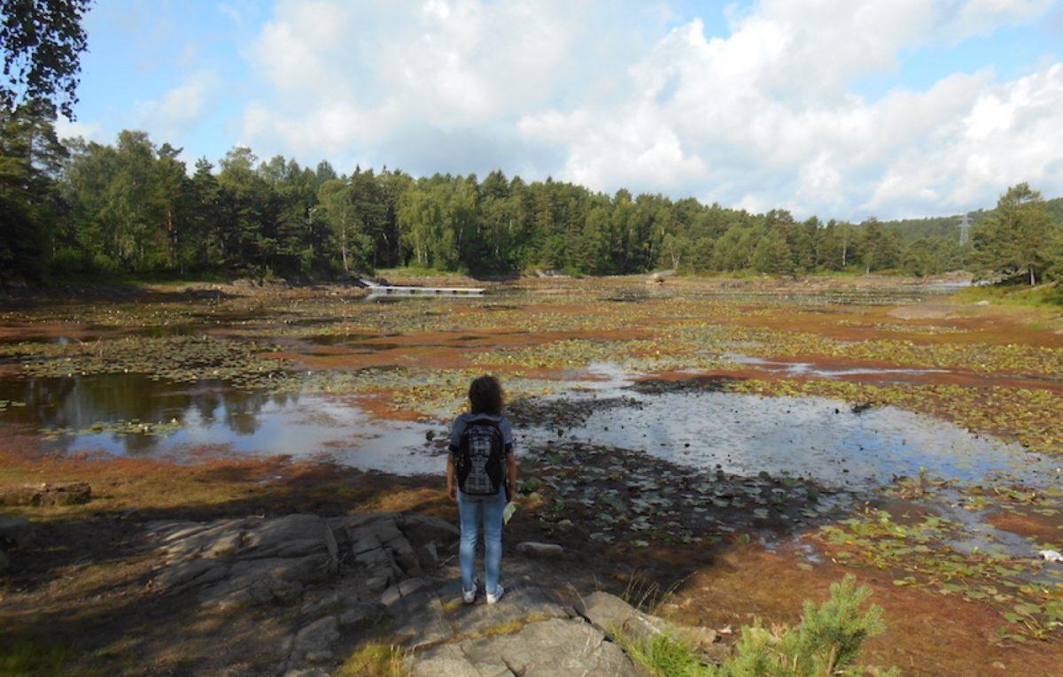 Kristiansand hiking