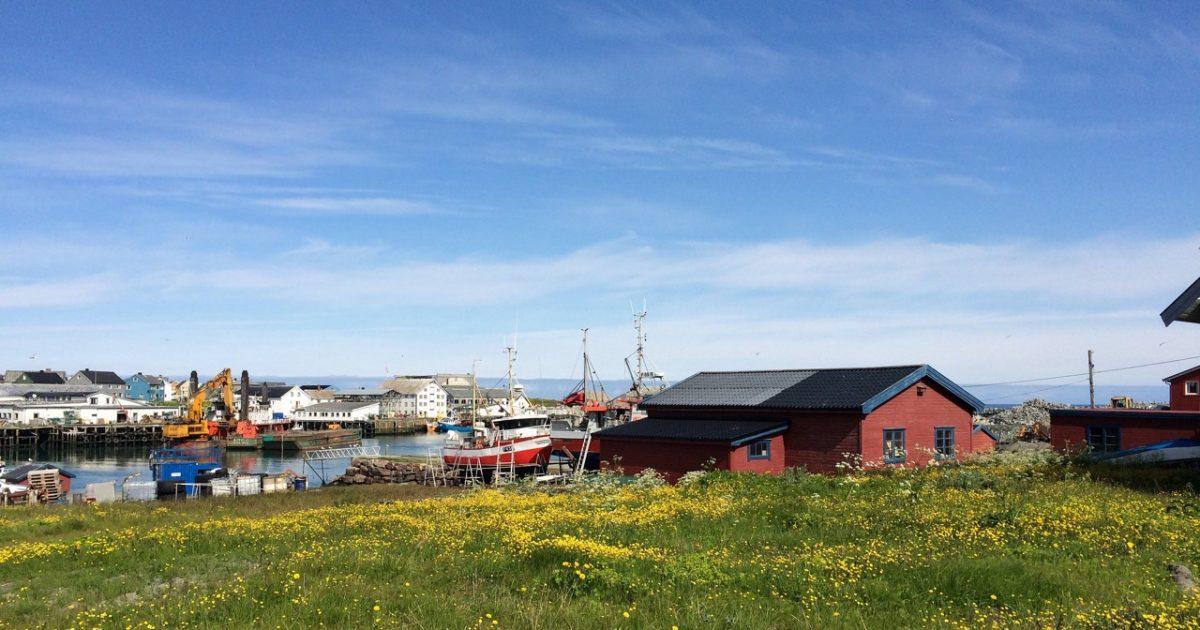 Berlevåg town