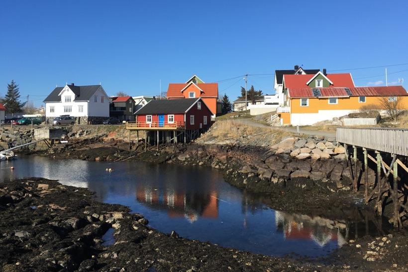 The rocky shoreline of Henningsvær