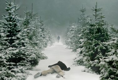 Wisting: The Next Nordic Noir Hit?