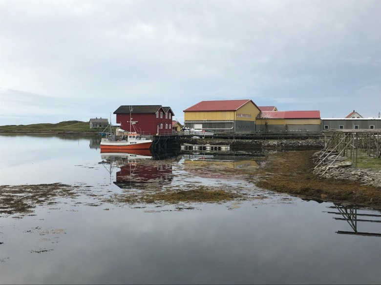 Fisherman's houses by the sea in Røst