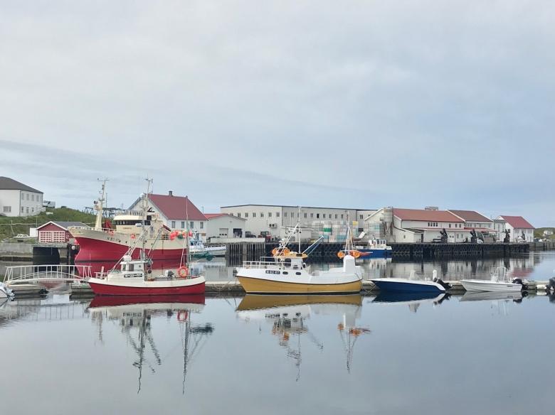 The fishing industry in Lofoten