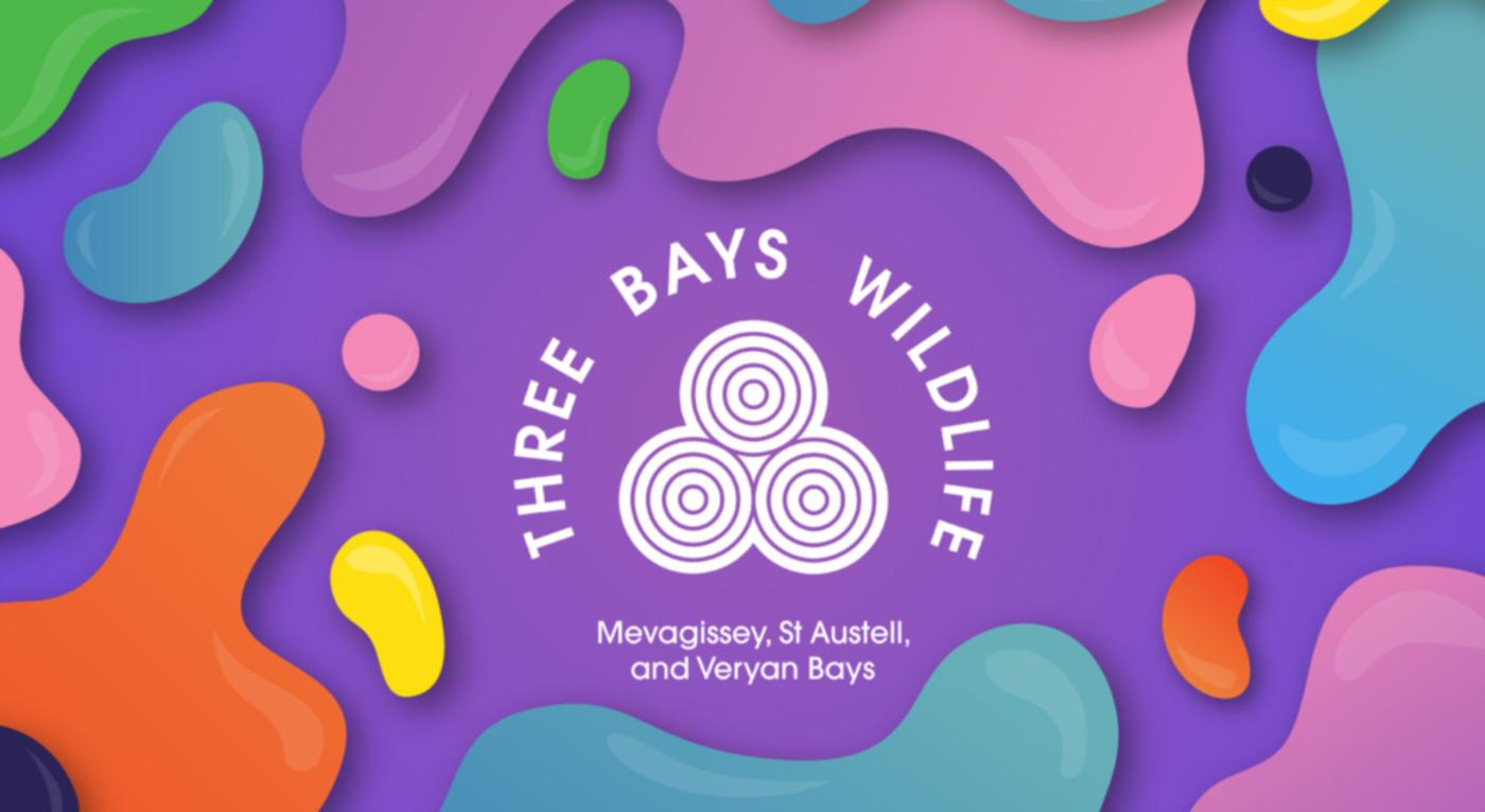 Three Bays Wildlife website preview