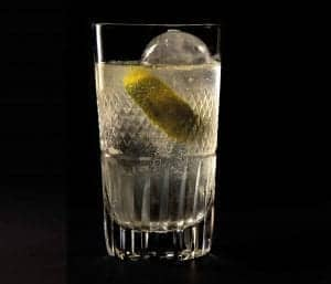 Glas vodka met ijs en vruchtje