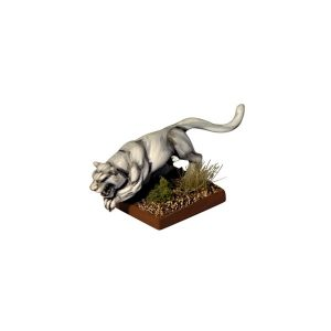 Elven Cat