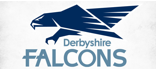 Derbyshire Falcons's logo