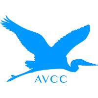 Avon Valley Cricket Club's logo