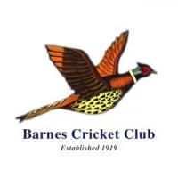 Barnes Cricket Club's logo