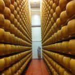 Parmigiano-Reggiano DOP Aged 30 Months 1210g 2
