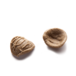 orecchiette grano arso