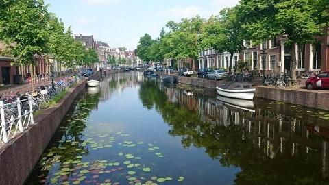Gee Up Leiden