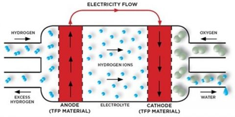 Fuel cells image in text