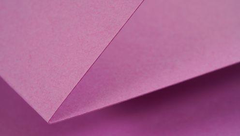 Vanguard Lilac 4