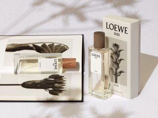 Loewe Perfume Packaging e1476349557132