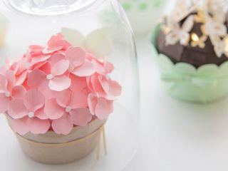 Cupcakes all e1476371344708