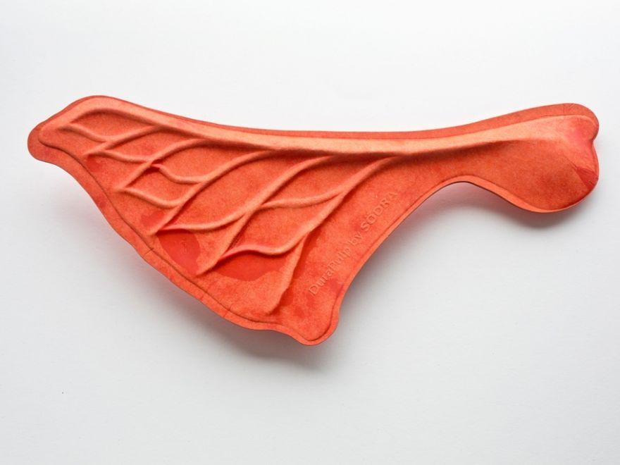 Orange seed pod