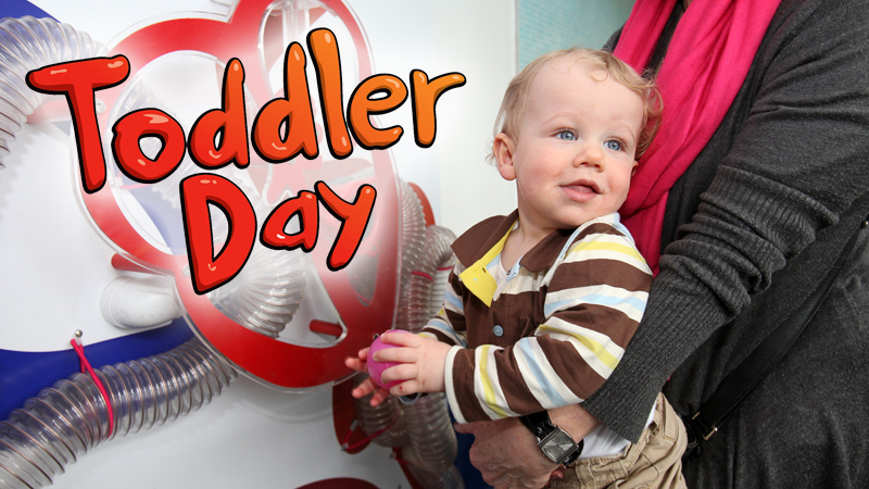 Toddler Day