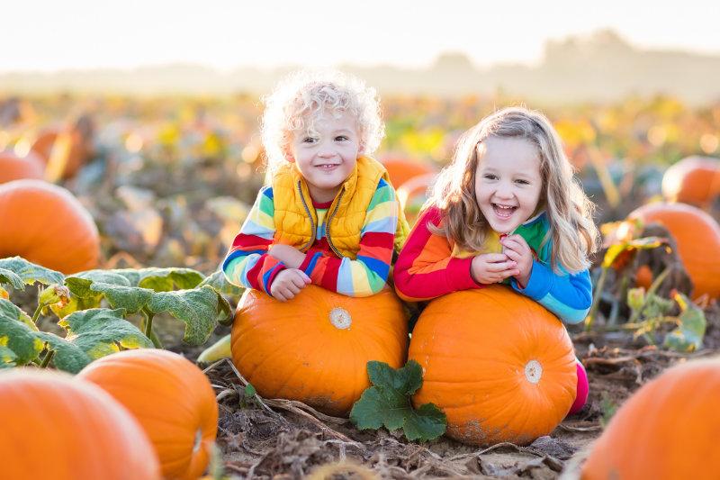 top-five-half-term-halloween-activities-wiltshire