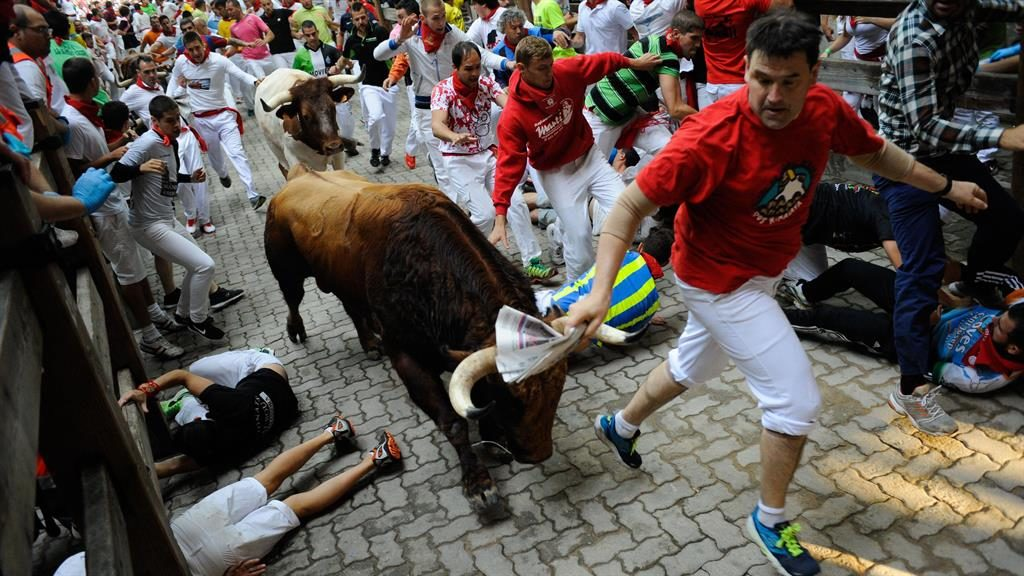 a review of the san fermin festival and the running of the bulls Three people have been gored during the first running of the bulls at this year's san fermin festival a 46-year-old spanish man is undergoing surgery a red cross spokesman said more runners were treated at the scene for bruises after two of the animals separated from the other four in the pack as.