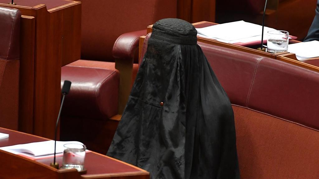 Pauline Hanson wears burka in Australian Senate — BBCI