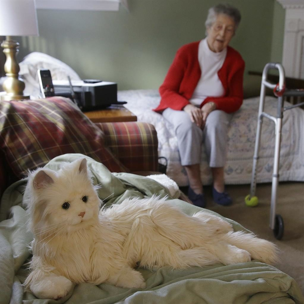 Now, a robotic cat armed with AI to help seniors