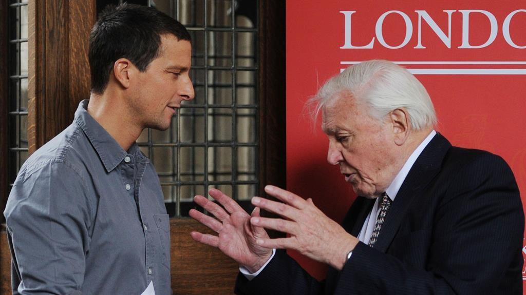 David Attenborough condemns killing animals on TV