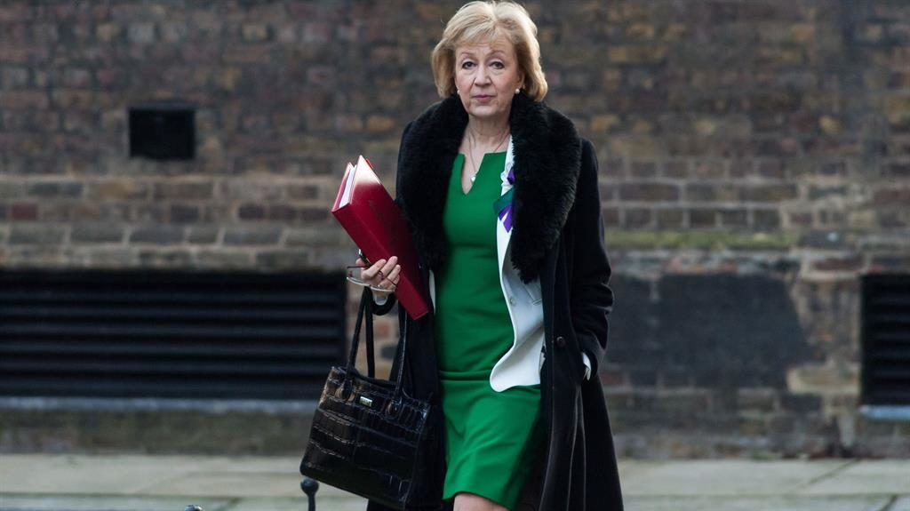 Defiant: Andrea Leadsom said the sender of her letter was a 'coward' PICTURE: REX