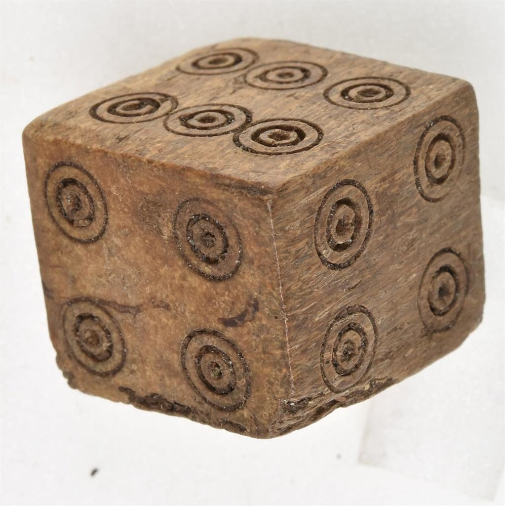 Game changer: The dice has two fives and two fours PICTURES: SWNS