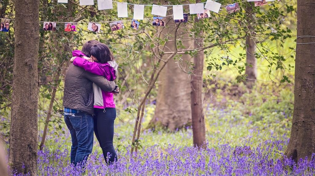 Moving moment: An amateur photographer stumbled upon a woodland proposal PICTURES: SWNS