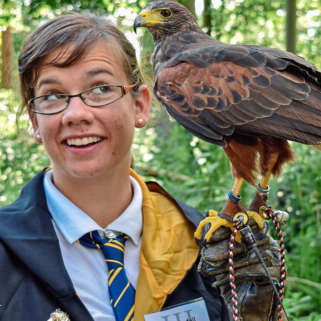 Charmed: Is that a patronus? The castle forest is home to falconry classes (PICTURE: Chryss Taylor Photography)