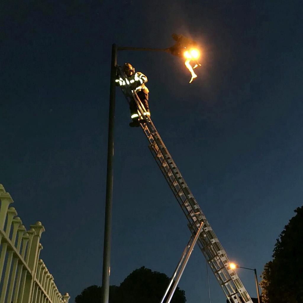 Man Stuck Up A Lamppost After Taking Illegal High Metro Newspaper Uk